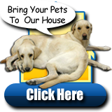 Click Here to Visit Our Pet Corner